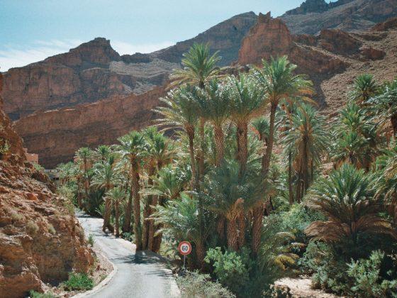 maroc-anti-atlas-trip-voyage-guide